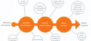 Graded Motor Imagery – le magie del cervello